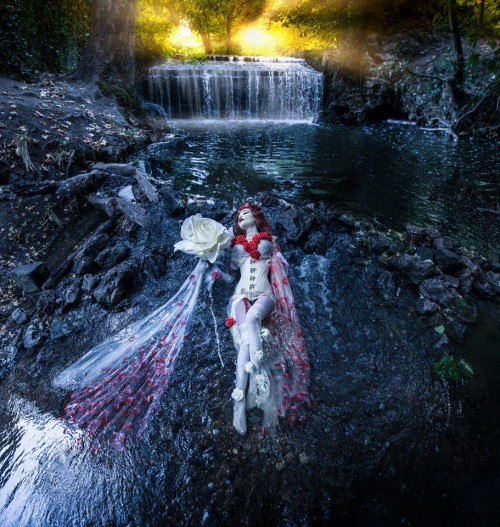 """Bonsoir les """"Artistocrates"""". """"Ce sont les larmes de Neptume qui firent couler les eaux, faisant ainsi jaillir la Rose éternelle"""". Photographe: Emmaarian still.photography."""
